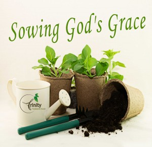 Sermon Series: Sowing God's Grace at Trinity Presbyterian Church, Southlake, TX