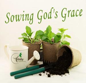 Sermon Series: Sowing God's Grace at Trinity Presbyterian Church, Southlake, TX